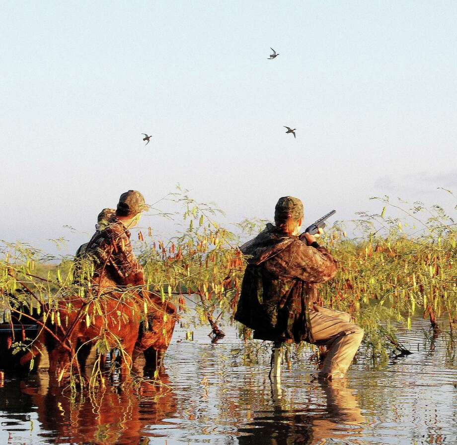 Waterfowlers anticipating Saturday's opening of the 16-day teal-only hunting season will see the most liberal bag limit since the season began in the 1960s, but delayed migration means they may see fewer of the fast-flying small ducks. Photo: Picasa