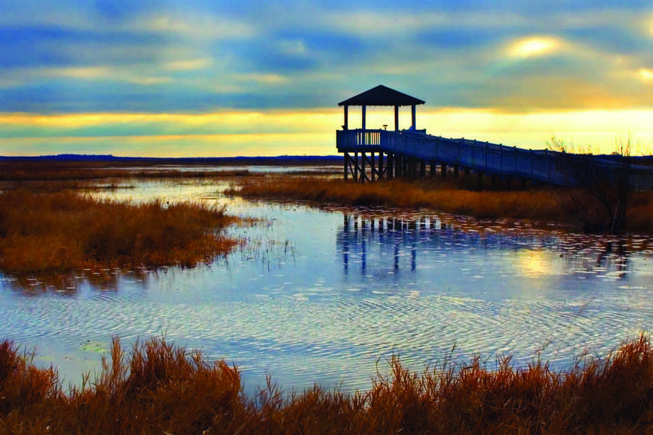 The boardwalk on the Creole Nature Trail, west of Lake Charles, allows spectacular views of the Louisiana marsh. Photo: Brendalafleur.com / Courtesy