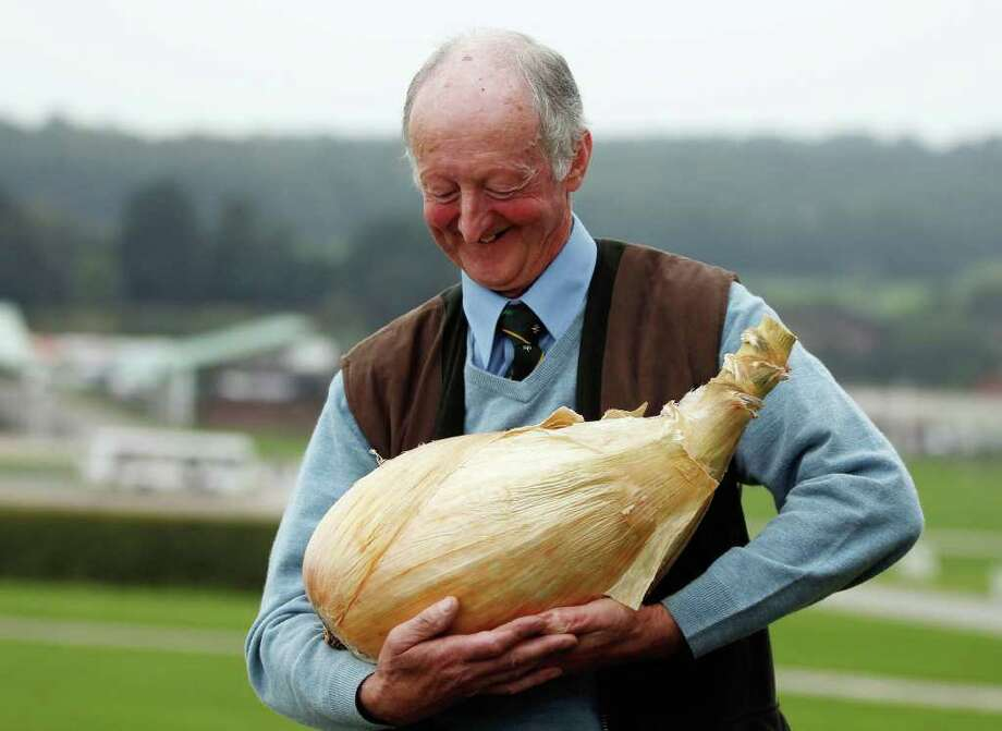 Gardener Peter Glazebrook poses for photographers with his world record breaking onion at The Harrogate Autumn Flower Show on September 16, 2011 in Harrogate, England. Peter Glazebrook from Newark, Nottinghamshire claimed a Guinness World Record with his giant onion weighing 8.150kg. Photo: Christopher Furlong, Getty Images / 2011 Getty Images