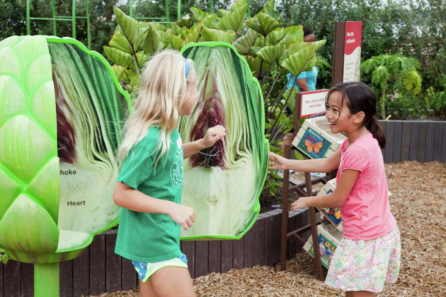 Edibles are ingredible at the Rory Meyers Children's Adventure Garden. Photo courtesy of the Dallas Arboretum