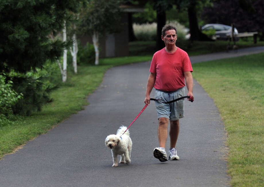 Ken Bohnec, of Trumbull, takes his neighbor's dog Bernie for a walk at Twin Brooks Park in Trumbull, Conn. on Friday September 13, 2013. Photo: Christian Abraham / Connecticut Post