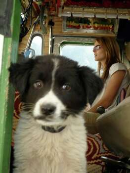 Truck driver on 'Ice Road Truckers' Lisa Kelly (behind the dog, obviously)