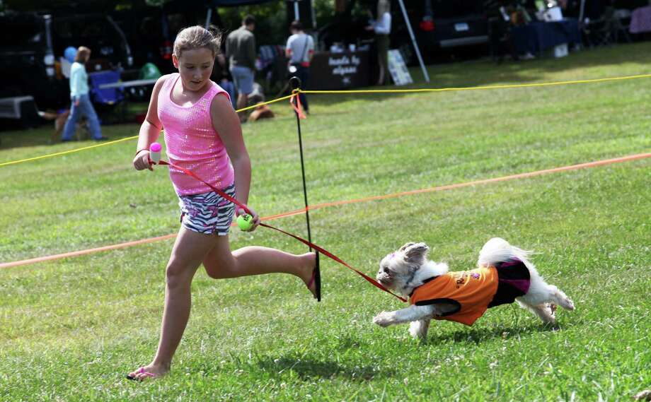 Morgan Garofalo, 10, of Derby, shows her dog Poochie's tricks at the Pawz in the Park  event in Ansonia on September 15, 2013. The event benefits local animal shelters and Police Puppy funds. Photo: BK Angeletti, B.K. Angeletti / Connecticut Post freelance B.K. Angeletti