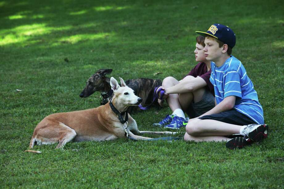 Erin and Ryan Gable, 13, of Milford, attend the Pups Without Partners Annual Picnic at Boothe Memorial Park in Stratford, Conn. on Sunday, Sept. 15, 2013.  Pups Without Partners is a non-profit greyhound only adoption program. Photo: BK Angeletti, B.K. Angeletti / Connecticut Post freelance B.K. Angeletti