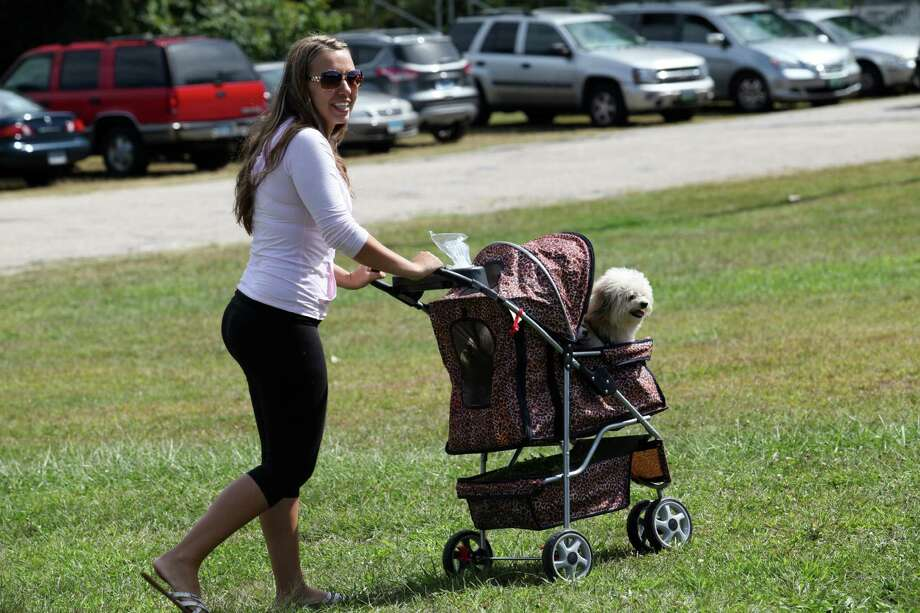 Dogs, owners and vendors attend the Pawz in the Park  event in Ansonia on Sunday, September 15, 2013. The event benefits local animal shelters and Police Puppy funds. Photo: BK Angeletti, B.K. Angeletti / Connecticut Post freelance B.K. Angeletti