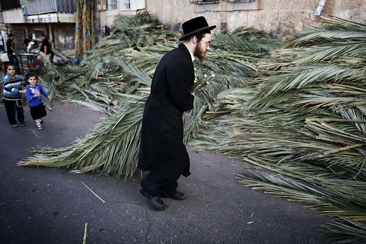 An ultra-Orthodox Jewish man carries palm branches to be used for the celebration of Sukkot, the feast of the Tabernacles, in an Ultra-Orthodox neighbourhood of Jerusalem on September 15, 2013. The Sukkot feast begins on September 18 and commemorates the exodus of Jews from Egypt some 3200 years ago. TOPSHOTS/AFP PHOTO/MENAHEM KAHANAMENAHEM KAHANA/AFP/Getty Images