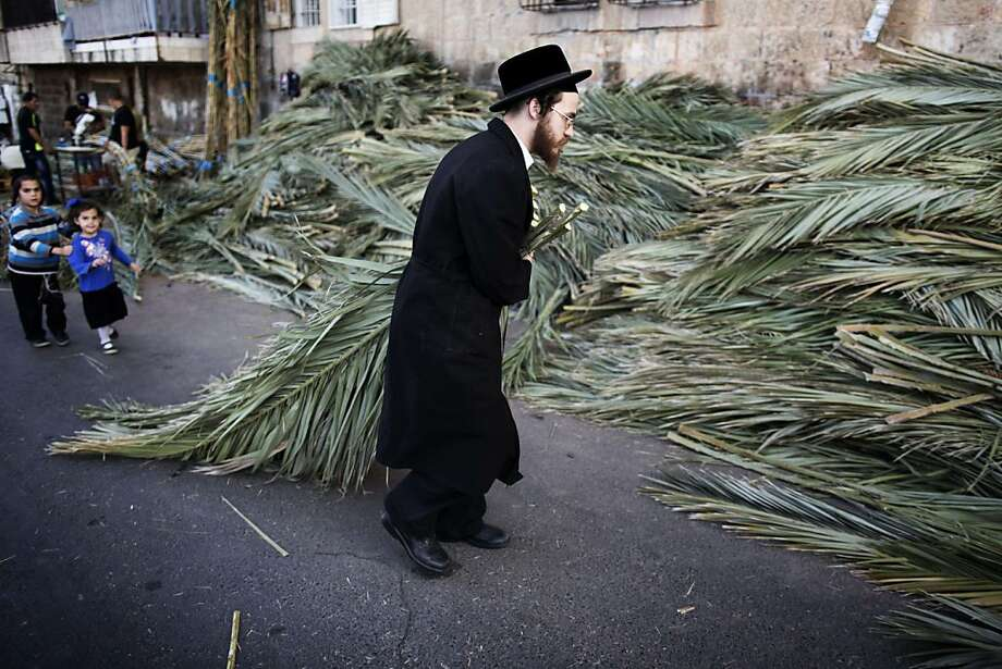 An ultra-Orthodox Jewish man carries palm branches to be used for the celebration of Sukkot, the feast of the Tabernacles, in an Ultra-Orthodox neighbourhood of Jerusalem on September 15, 2013.  The Sukkot feast begins on September 18 and commemorates the exodus of Jews from Egypt some 3200 years ago.     TOPSHOTS/AFP PHOTO/MENAHEM KAHANAMENAHEM KAHANA/AFP/Getty Images Photo: Menahem Kahana, AFP/Getty Images