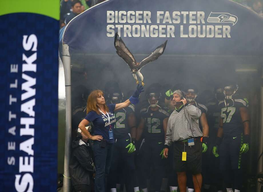 SEATTLE - SEPTEMBER 15:  The Augur hawk flies out on the field before the game between the Seattle Seahawks and the San Francisco 49ers on September 15, 2013 at Century Link Field in Seattle, Washington.  (Photo by Jonathan Ferrey/Getty Images) Photo: Getty Images
