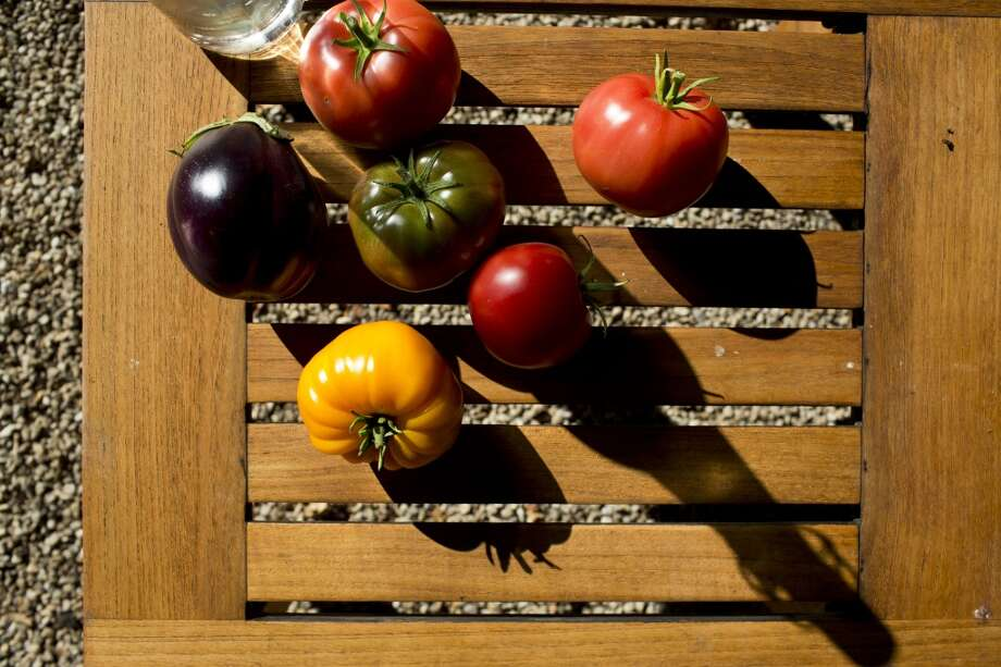 Sierra Mar: Freshly picked heirloom tomatoes and eggplant from the garden at Sierra Mar in Big Sur. Photo: Jason Henry, Special To The Chronicle