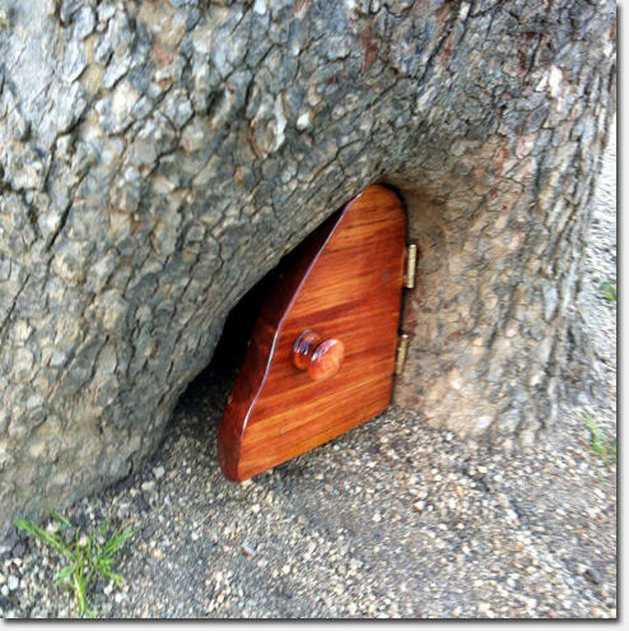 First, a tiny door makes a February debut  nestled in the roots of a tree in Golden Gate Park's concourse. Photo: Erica Reh, Richmondsfblog.com
