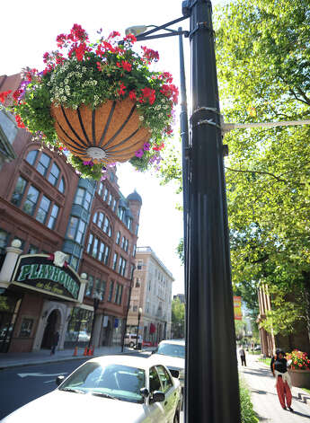 """The Asthma and Allergy Foundation of America ranked the country's biggest """"allergy capitals,"""" and three Connecticut  cities made the top 50. Scroll through to see the list. Photo: Brian A. Pounds / Connecticut Post"""