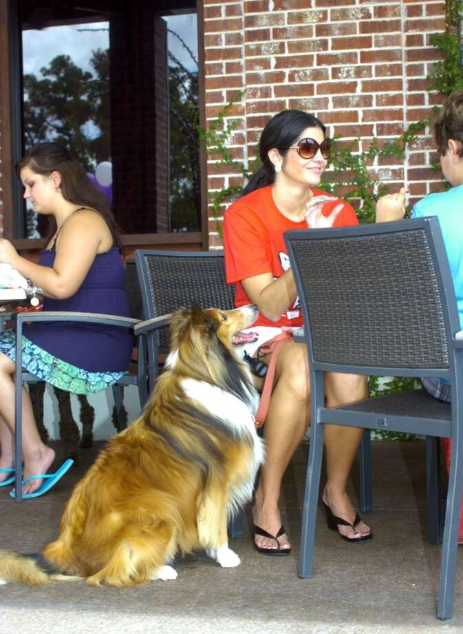 Liza Garza of Beaumont attended the Bark for Life kickoff brunch at Goodfella's on Sunday accompanied by Neko, her sheltie, and other family members. Photo: The Beaumont Enterprise