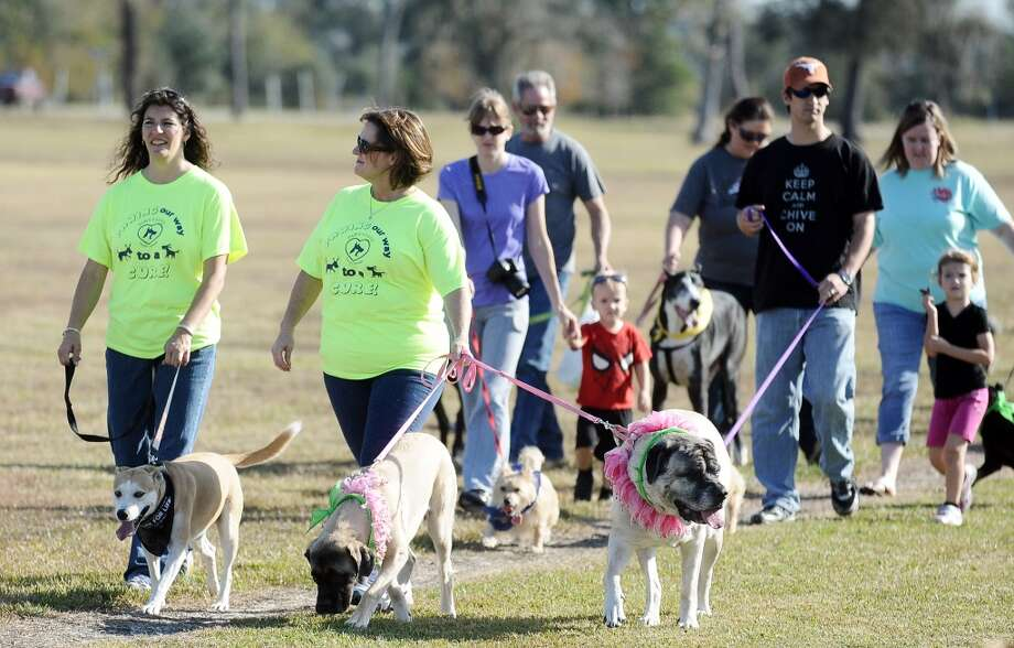 The American Cancer Society held their Bark for Life event at Tyrrell Park on Saturday, November 10, 2012.  This event brought out pups of all shapes and sizes.  Offering activities, contests, and a special walk for the dogs. Photo taken: Randy Edwards/The Enterprise