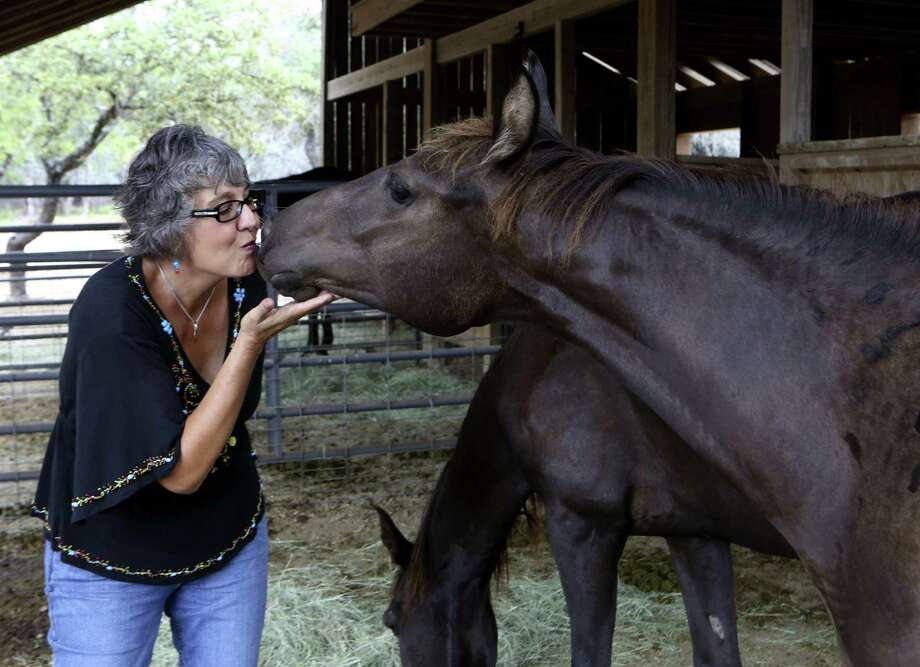Sylvia Chavez Sitters was a newspaper marketing expert who left her job to become an equine massage therapist. Photo: Photos By Helen L. Montoya / San Antonio Express-News