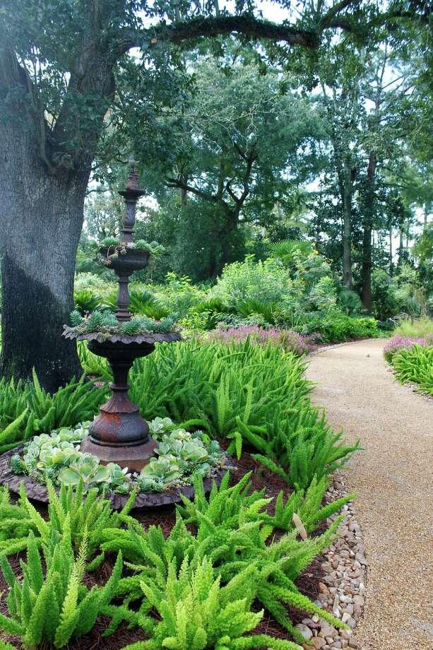 Shangri La Botanical Gardens in Orange, Texas, on Sept. 7, 2013. Photo: Betty Luman, Staff / © 2012  Houston Chronicle