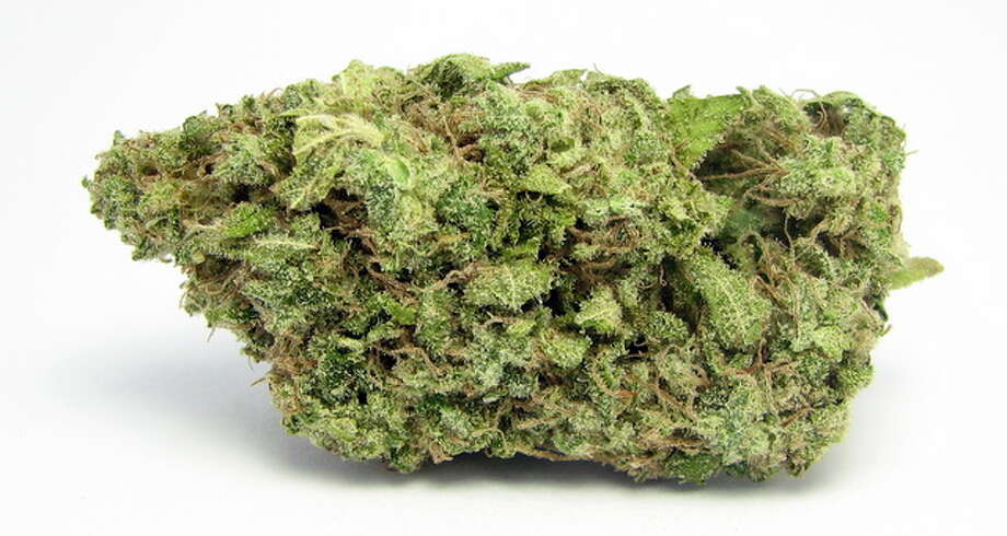 Cherry AK47:Another unfortunately named, wildly popular and effective sativa – AK-47 crosses sativas from Colombia, Mexico and Thailand with a little bit of Indica from Afghanistan. The Cherry sub-strain is even more fruity and sweet. Photo: David Downs, Smell The Truth