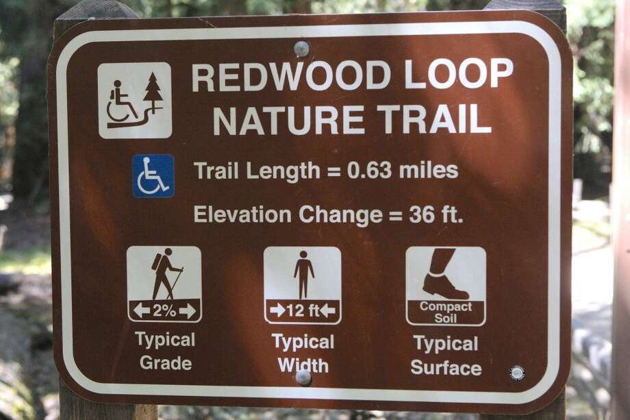 Trail sign shows it's an easy 0.6-mile walk to see the forest giants Photo: Tom Stienstra