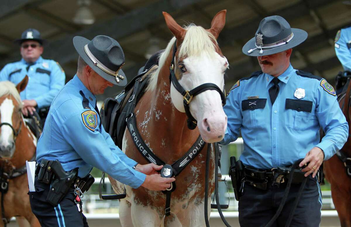 """Lt. Randall Wallace pins """"Smash"""", the newest member of HPD Mounted Patrol as HPD Officer Jeff Harris looks on."""