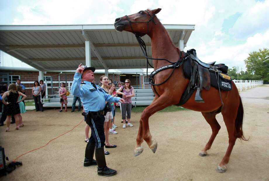 "HPD Officer Greg Sokoloski commands ""Texas Star"" to jump after the pinning presentation for ""Smash"" at HPD Mounted Patrol. Photo: Mayra Beltran, Houston Chronicle / © 2013 Houston Chronicle"