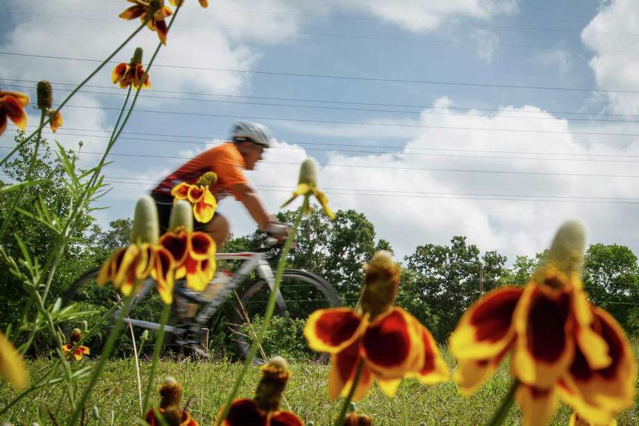 If you're lucky, you can find flowers in bloom Terry Hershey Park Hike and Bike Trail. Photo: Michael Paulsen, Houston Chronicle / © 2013 Houston Chronicle