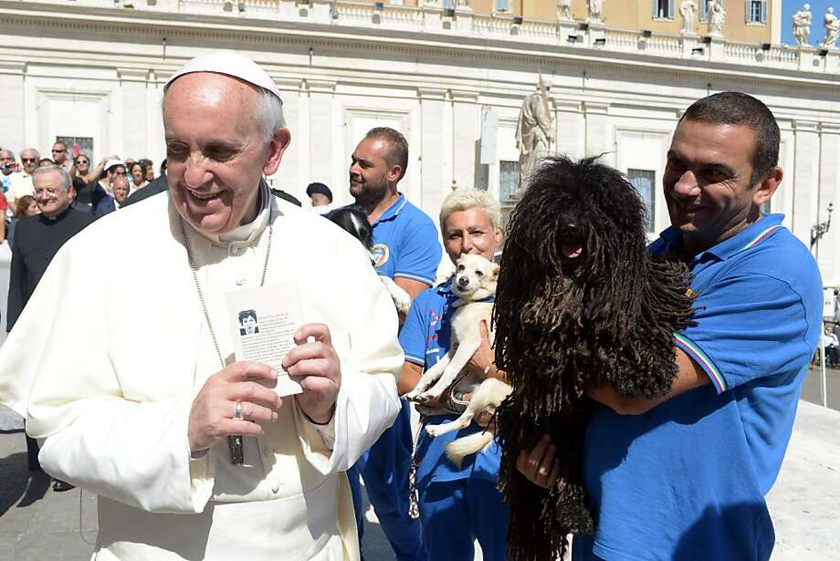 In this photo provided by the Vatican newspaper L'Osservatore Romano, Pope Francis is shown a dog by a member of the Federazione Italiana Sport Cinofili (Italian Federation of Canine' Sports), following his weekly general audience at the Vatican, Wednesday, Sept. 18, 2013. (AP Photo/L'Osservatore Romano, ho) Photo: Associated Press