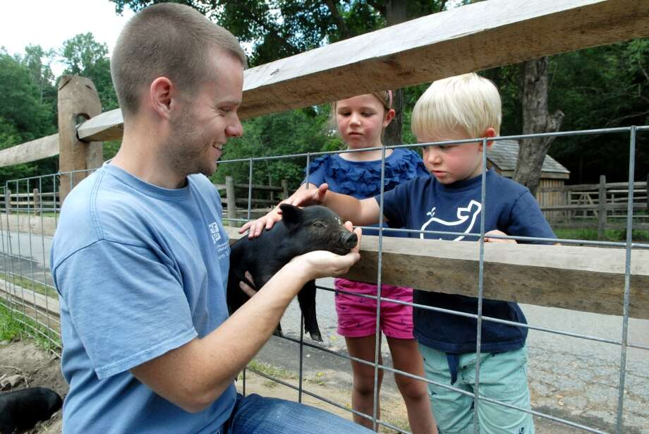 The Stamford (Conn.) Museum & Nature Center invites kids its Sunday Explorers program on Sundays, from Sept. 22 through Nov. 24, 2013, (except Oct. 20 and 27). The program features live animal visits, garden experiences and crafs. Photo: Dru Nadler