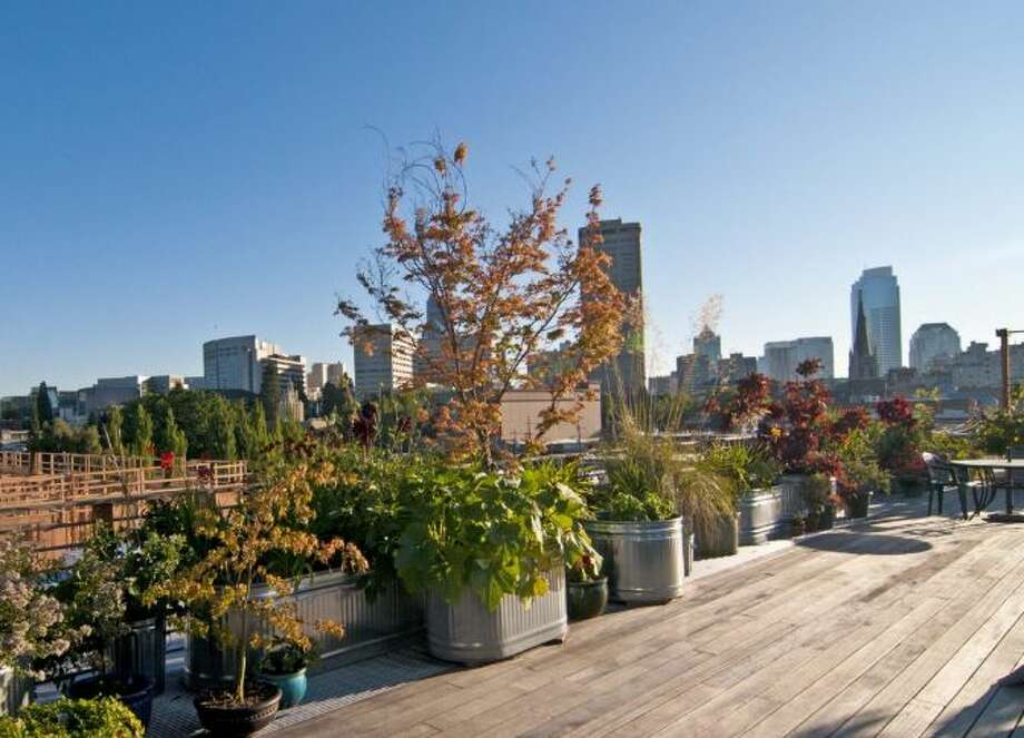 Common roof deck of 1100 E. Union. Unit 2d is listed for $849,000. Photo: Courtesy Katharine Gibson, Windermere Real Estate