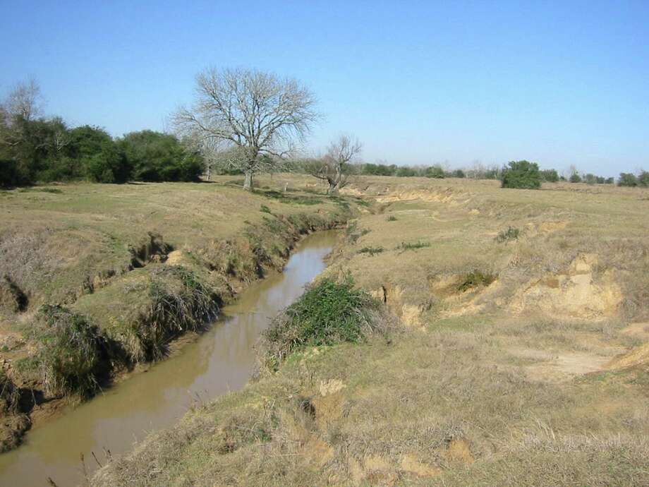Before Cross Creek Ranch was developed, the land was an overgrazed pasture. And that stretch of Flewellen Creek, straightened and channelized, was more a drainage ditch than a creek.