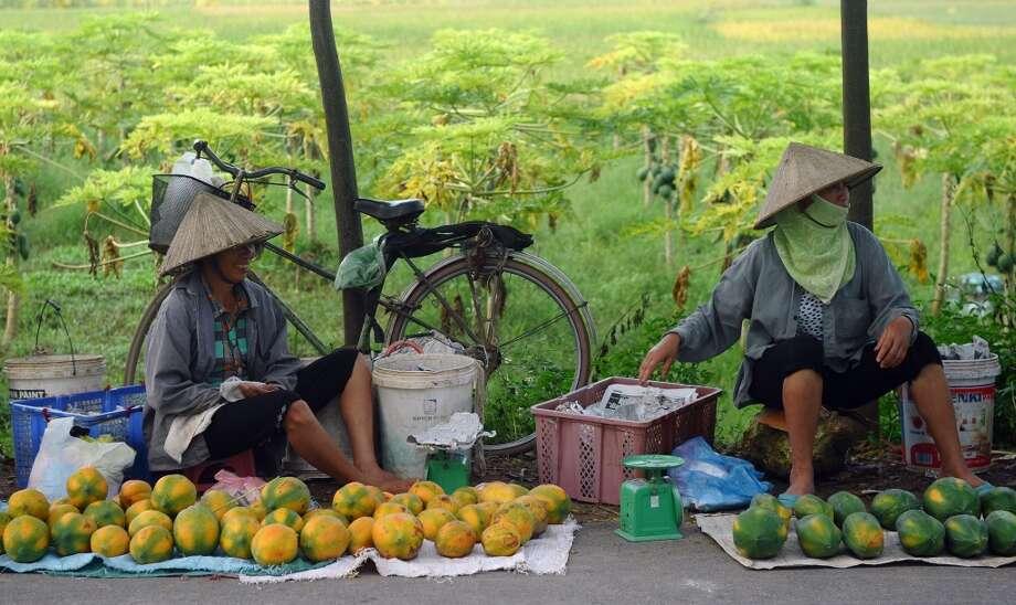 Vietnam: Farmers selling papaya fruits on the side of a road in the outskirts of Hanoi. Growing fruit trees is also an income source for farming famillies in some regions of Vietnam. Photo: Hoang Dinh Namhoang, AFP/Getty Images