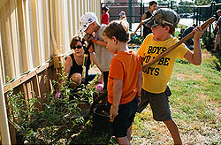Briargrove Elementary School students build a refuge for migrating monarch butterflies. Photo: Provided By Briargrove Elementary School