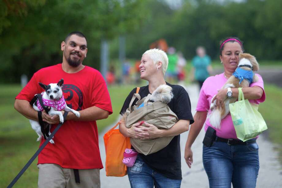 With their dogs, at left, Gabriel Diaz, holds Elsie, Susan Ashworth, holds Preston and Sol Lara, holds Prinston, as they joined hundreds of dogs and their owners walking around T.C. Jester Park. Photo: Johnny Hanson, Houston Chronicle / Houston Chronicle