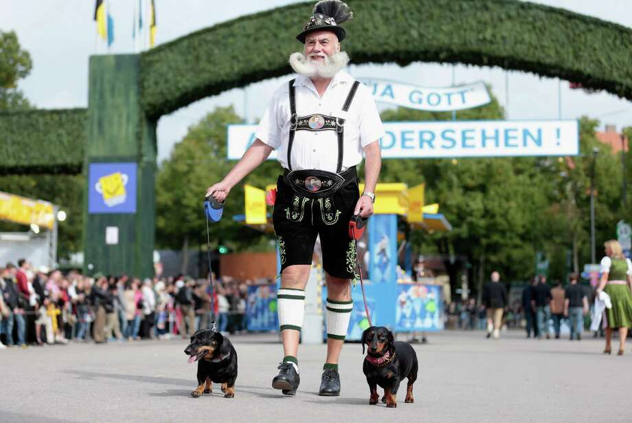 A Bavarian dressed man arrives with his sausage dogs during the opening parade of the Oktoberfest 2013 beer festival at Theresienwiese on September 21, 2013 in Munich, Germany. Photo: Johannes Simon, Getty Images / 2013 Getty Images