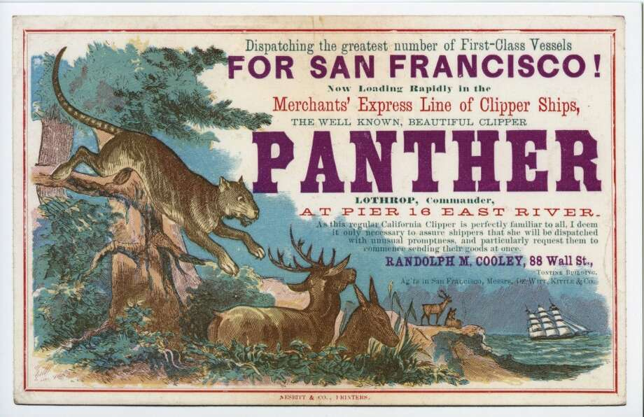 Panther was built in 1854 in Medford, Mass. Photo: Courtesy The Bancroft Library