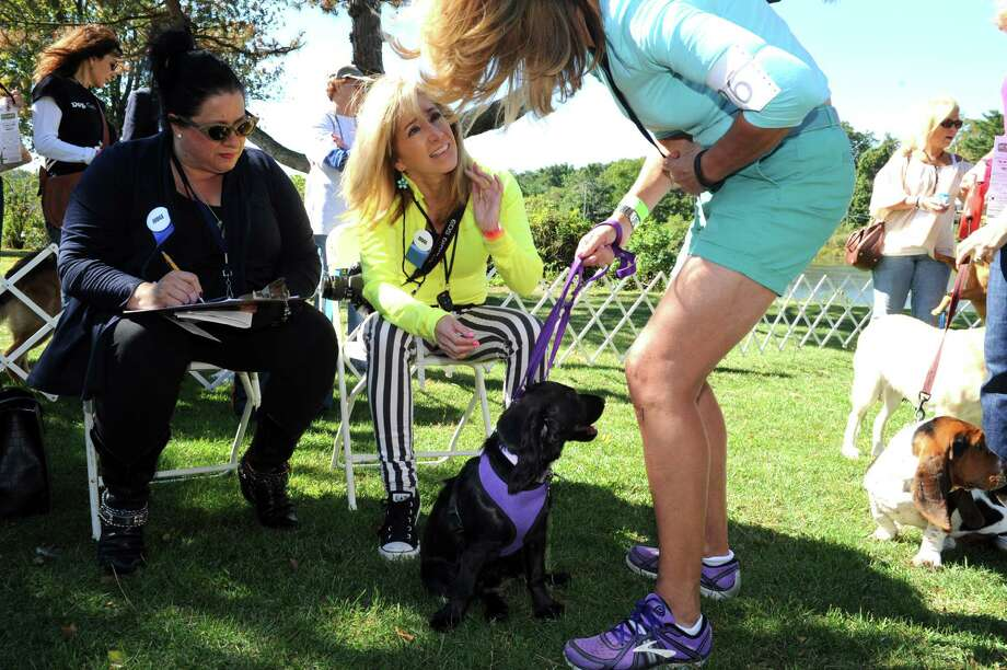 Judges of Puppy Love, Caroline Corly, of The Morning Peak, and Lauren Collier, of Pet Talk News 12CT, Audrey McMiff, of Greenwich, shows Josie, 6- month-old at Adopt-A-Dog's 26th annual Puttin' on the Dog festival at Roger Sherman Baldwin Park, in Greenwich, Conn., Sunday, Sept. 22, 2013. Photo: Helen Neafsey / Greenwich Time