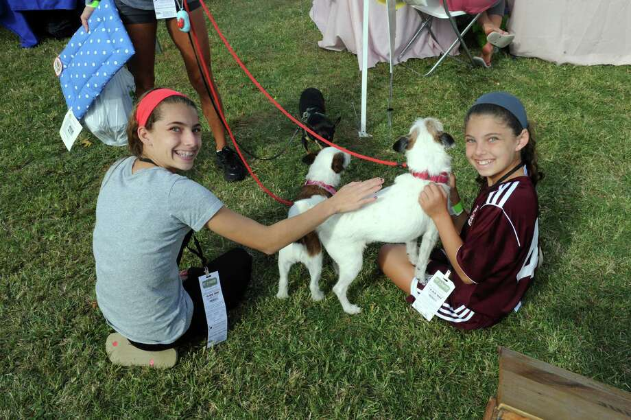 Lex Schechter, 13, Harrison  N.Y., and her sister, Lara, 10, pet Rielly and Murray of Greenwich, at Adopt-A-Dog's 26th annual Puttin' on the Dog festival at Roger Sherman Baldwin Park, in Greenwich, Conn., Sunday, Sept. 22, 2013. Photo: Helen Neafsey / Greenwich Time