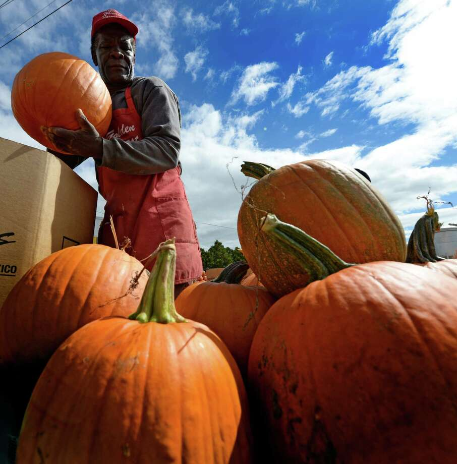 Worker Roy Thompson works on a display of pumpkins Monday afternoon, Sept. 23, 2013, at the Golden Harvest Orchards in Valatie, N.Y. (Skip Dickstein / Times Union) Photo: Skip Dickstein