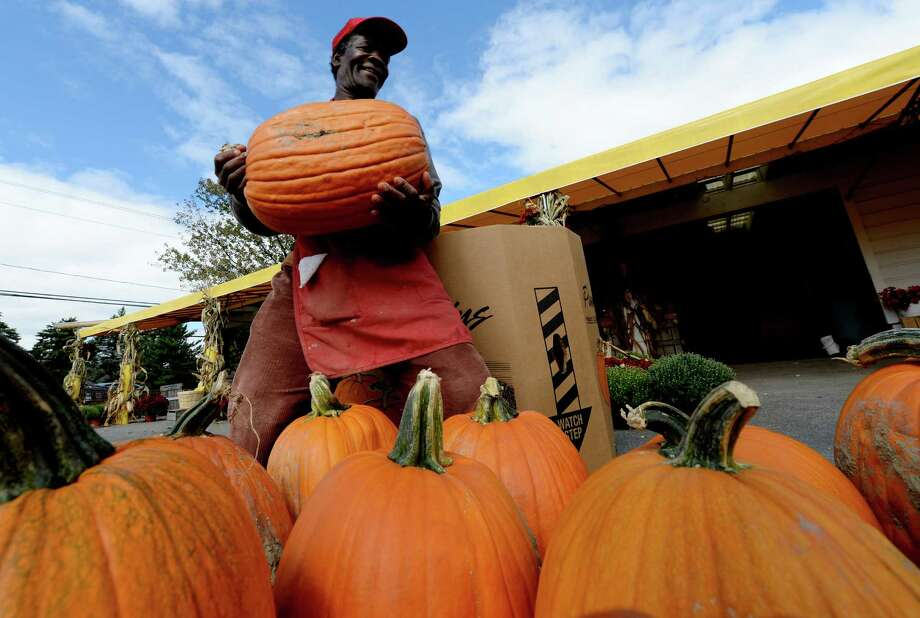 Worker Roy Thompson brings out pumpkins which were being displayed for sale Monday afternoon, Sept. 23, 2013, at the Golden Harvest Orchards in Valatie, N.Y. Fall began last Sunday.  (Skip Dickstein / Times Union) Photo: Skip Dickstein