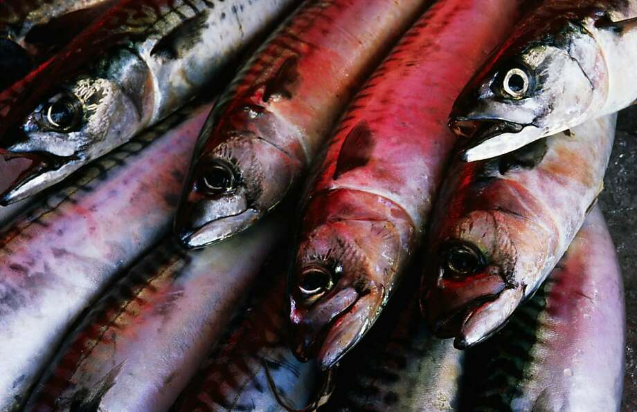 5. Fish Photo: Holger Leue, Lonely Planet Images