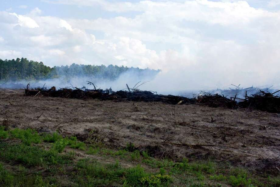 Brush burning at Village Creek State Park drifted south Tuesday, leaving the smell of burnt wood in the air. The park is cleaning up a tract of land that will be planted in longleaf pine, which was once all across the south. Photo: Tim Monzingo