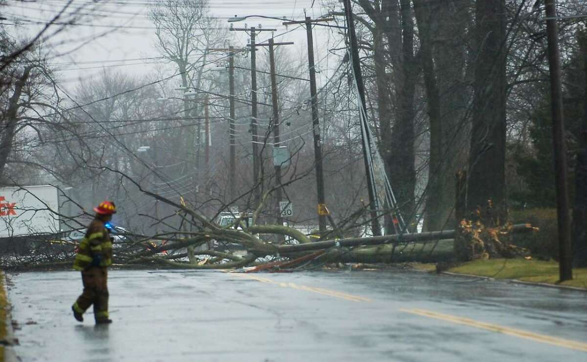 A Stamford firefighter looks north on Shippan Ave. in Stamford at the damaged caused by a tree which fell on power lines around number 1720 Shippan Ave. during a wind and rain storm which hit Stamford Monday morning Jan. 25th, 2010.