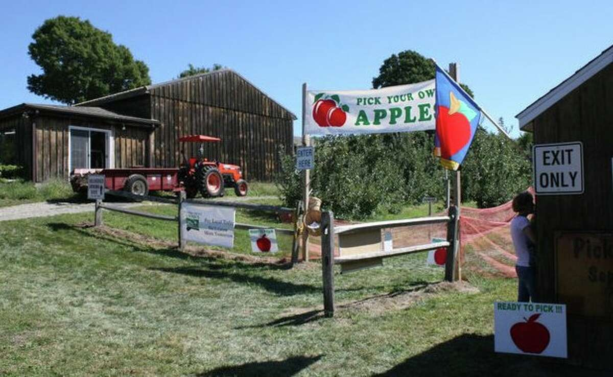 Beardsley's Cider Mill & Orchard- Shelton The apple orchard makes sweet cider from late October to early November and co-owners Dave or Dan Beardsley are ready to advice those who want to use it to make their own hard cider.