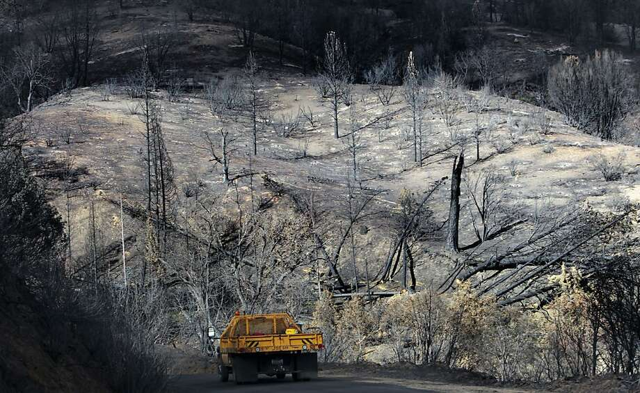 It will take decades for Sierra Nevada forests that were severely burned in the massive Rim Fire to fully recover. Photo: Michael Macor, The Chronicle
