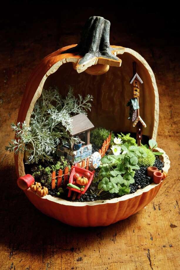 Susan Lummis' Farmers Market Garden is displayed in a sealed papier-mâché pumpkin. Photo: Michael Paulsen, Staff / © 2013 Houston Chronicle