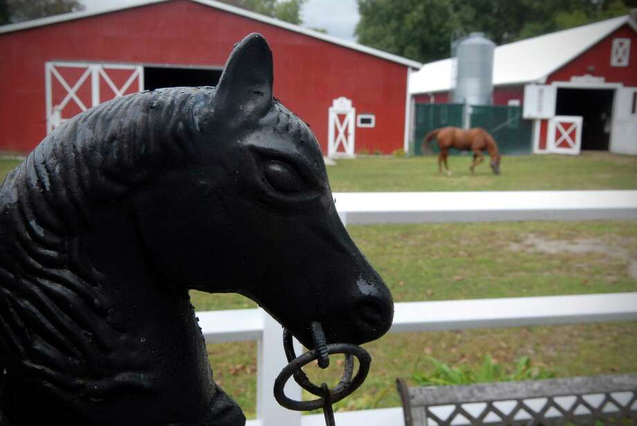 A horse grazes at Red Barn Stables in Stamford, Conn. on Friday september 27, 2013 Photo: Dru Nadler / Stamford Advocate Freelance