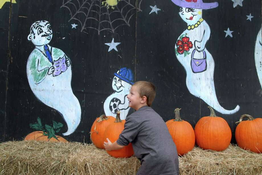 Jake Hill (4) picks a pumpkin at Eden Farms on Stillwater Rd in Stamford, Conn. on Friday September 27, 2013 Photo: Dru Nadler / Stamford Advocate Freelance