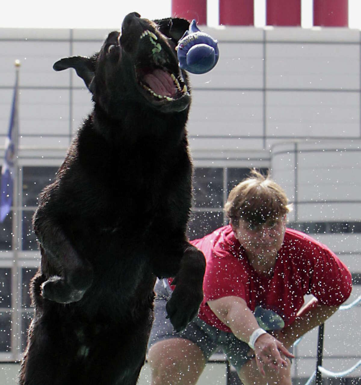 Sandy Goodson and her Labrador retriever
