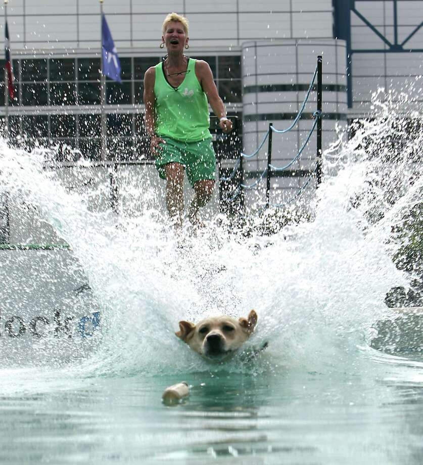 "Jana Tuchin and her Labrador retriever ""Keeper"" compete during the sixth annual DockDogs competition DockDogs at Discovery Green Friday, Sept. 27, 2013, in Houston. Photo: James Nielsen, Houston Chronicle / © 2013  Houston Chronicle"