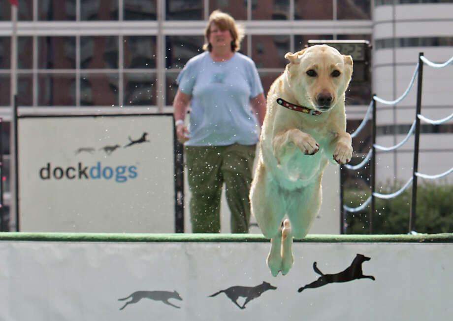 "Karla Zielke and her Labrador retriever ""Chewla"" compete during the sixth annual DockDogs competition DockDogs at Discovery Green Friday, Sept. 27, 2013, in Houston. Photo: James Nielsen, Houston Chronicle / © 2013  Houston Chronicle"