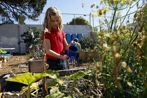Alta Vista Elementary School student Evelyn Stanley waters plants in the school's garden during the annual Portola Garden Tour in San Francisco, California Saturday, September 28, 2013. Photo: Michael Short, The Chronicle