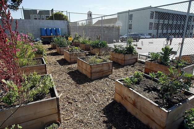 The garden at Alta Vista Elementary School seen during the annual Portola Garden Tour in San Francisco, California Saturday, September 28, 2013. Photo: Michael Short, The Chronicle
